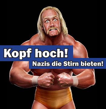 Hoggan vs. Nazis